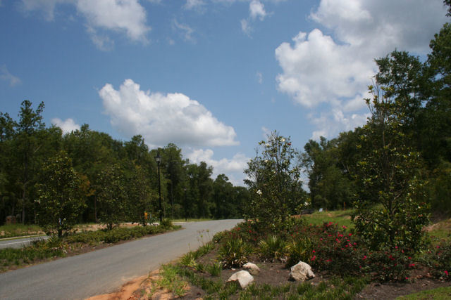 Entrance off highway 90  Magnolia Forest Subdivision Lots for Sale in Quincy, FL by Debbie Kirkland, Realtor Armor Realty of Tallahassee, I