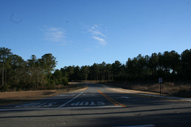 Selman Road Entrance Paved Roads, Sidewalks and Streetlights Magnolia Forest Subdivision Lots for Sale in Quincy, FL by Debbie Kirkland, Realtor Armor Realty of Tallahassee